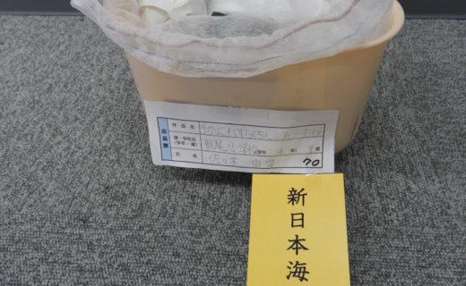 新日本海新聞社賞 (手がよごれず、らくちん三角コーナーネット 佐々木 由愛)